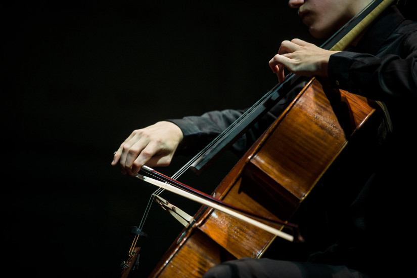 Péter Váray Cello DLA Concert